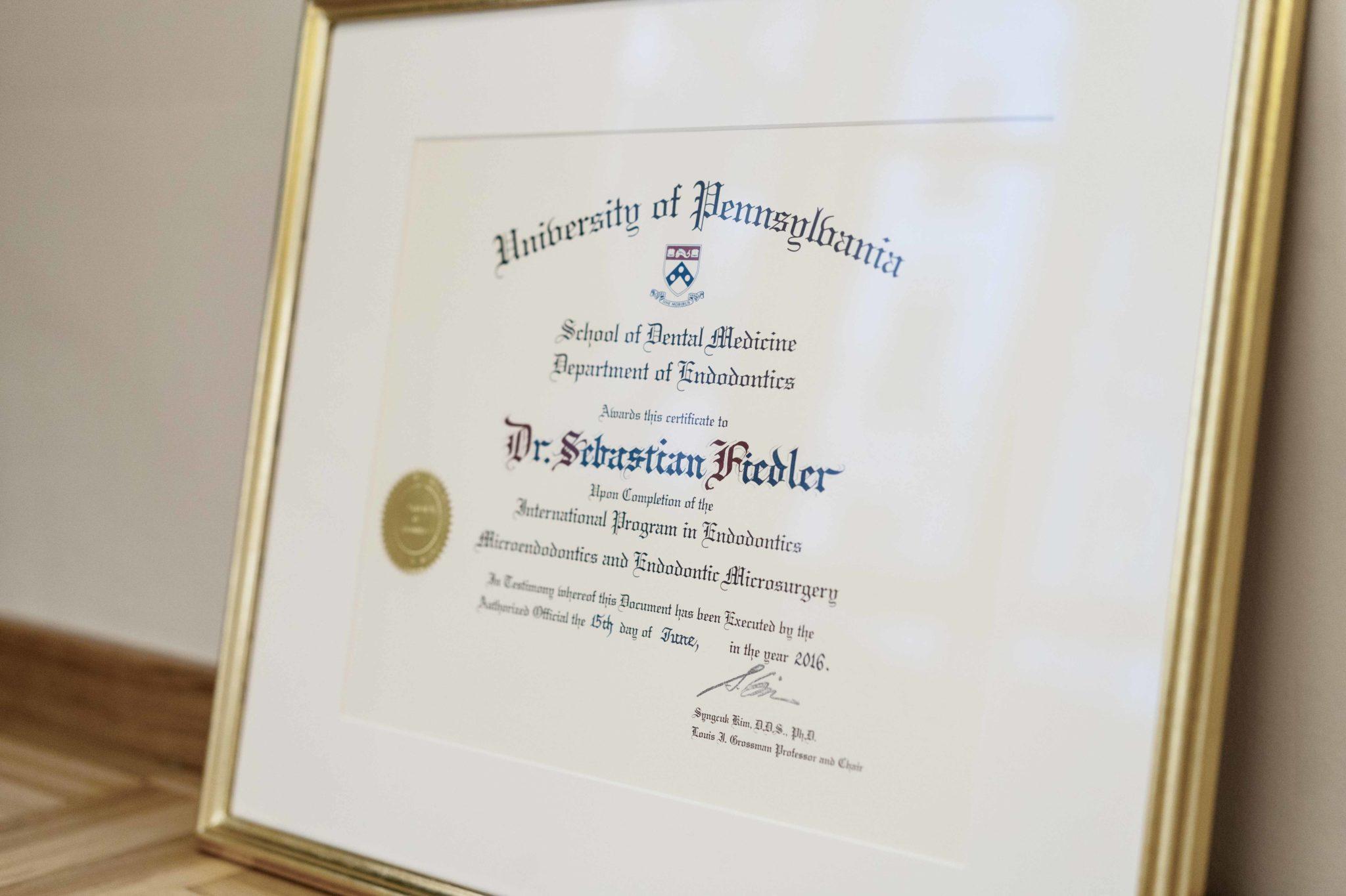 Zertifikat Dr. Sebastian Fiedler
